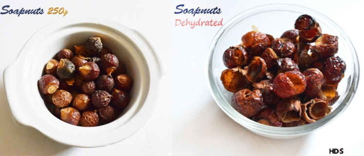 diy-homemade-shampoo-soapnuts-dried-vs-raw