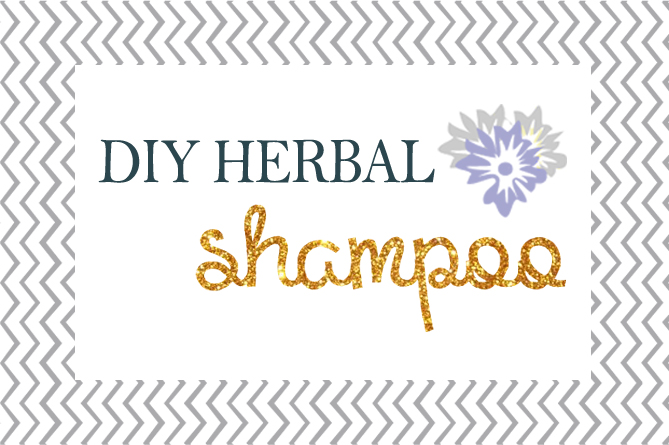 diy-homenade-shampoo-header